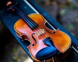 Antiquité de l'Arc -PAris- Instruments de musique